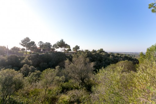 Large building plot with sweeping views in Puntiro