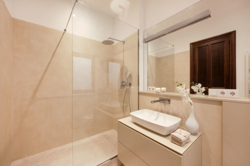 Second, modern bathroom with shower