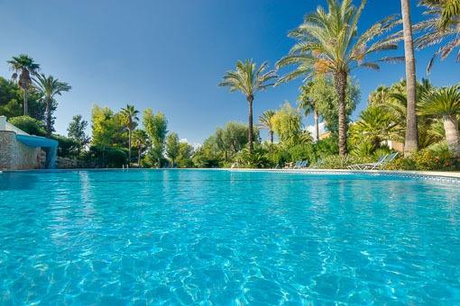 Beuatiful pool and garden area