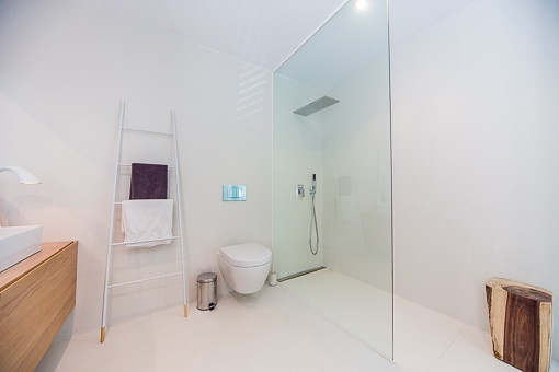 Modern bathroom with shower