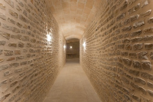 Vault from the finca