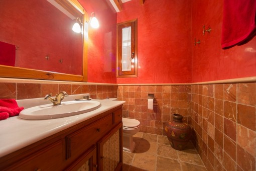 Guest bathroom with daylight