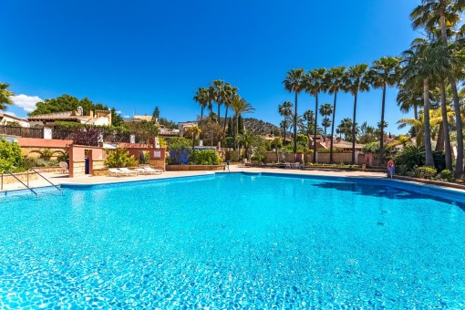 Fantastic community pool with mediterranean garden