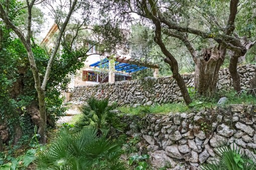 The finca stands on a plot of over 5,000 sqm