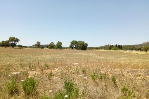 Beautiful building plots in a wonderful location with views of Santueri and San Salvador