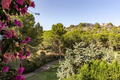 Beautiful view from the terrace over the surrounding area