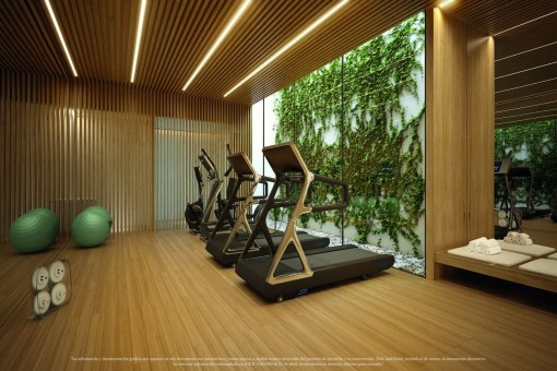 Gym and wellness area