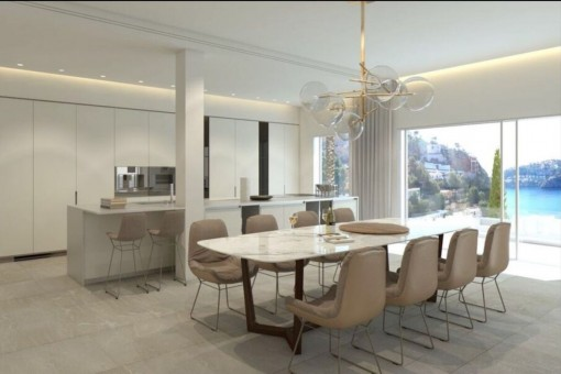 Dining area with fully-equipped designer-kitchen