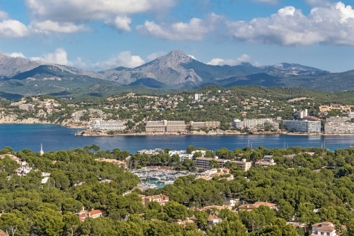 Views to the highest peak in the south of Mallorca, the Puig Galatzo