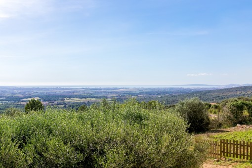 Breathtaking views over the whole bay of Palma