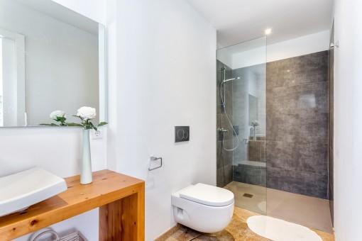 Simplistic bathroom with walk-in shower