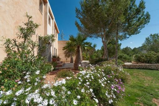 Beautiful entrance area with mediterranen plants