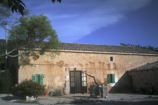 Tomt i Santa Eugenia