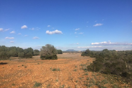 Quietly-situated building plot near to Cala Pi