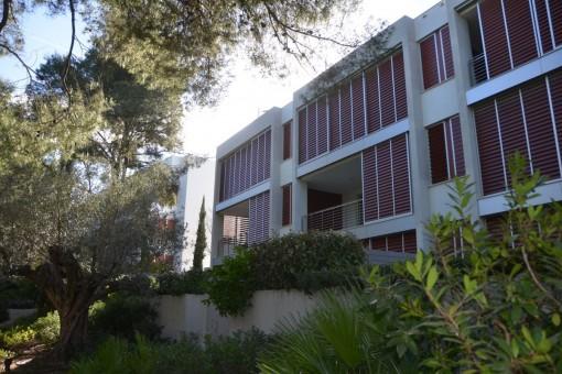 Lägenhet i Calvia