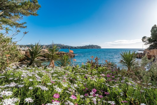 Wonderful 2-bedroom apartment on the first sea line in Santa Ponsa
