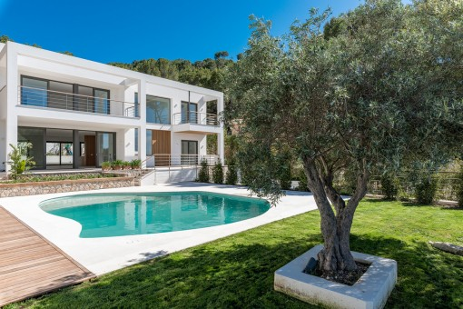 Mediterranean outside area with olive trees