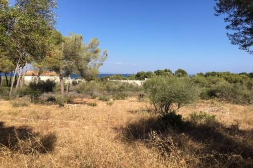 Tomt i Sol de Mallorca