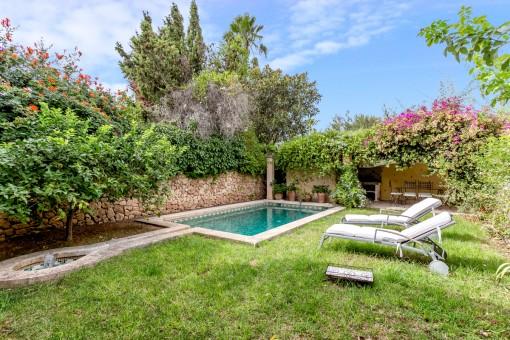 Wonderful, green garden with pool