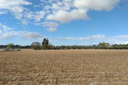 Easily accessible building plot with wonderful views of the Tramuntana mountains in Sencelles