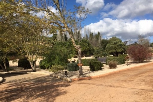 Beautiful garden area