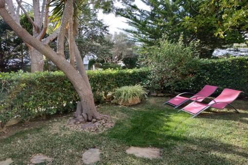 Wonderful, sunny garden area