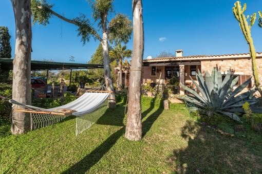 Sunny garden area with hammock