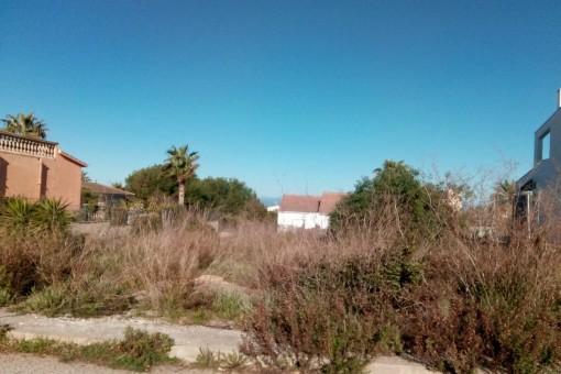 Tomt i Colonia de San Pedro