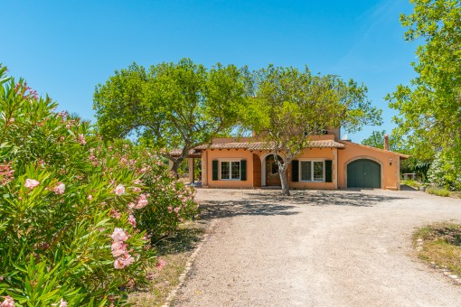Charming finca at the foot of a hill in...