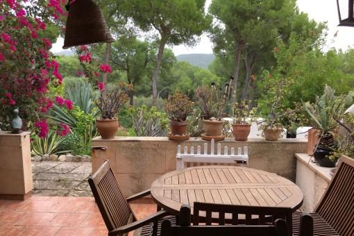 Idyllic ground-floor apartment with garden terrace close to the Club de Vela, Port Andratx